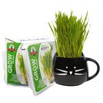 Catnip & Pet Grass