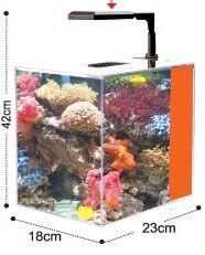 Dolphin Nano Plastic aquarium Kit