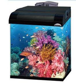 Dolphin Marine Kit - Fish Aquariums & Starter Kits product