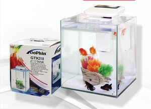 Dolphin Glass Mini Tank
