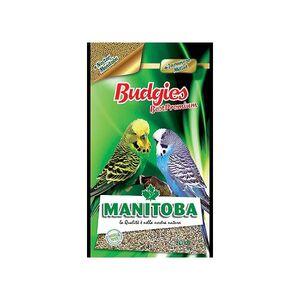 MANITOBA BUDGIES