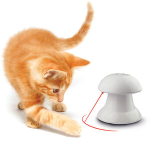 Cat laser toy  - Cats Toys product