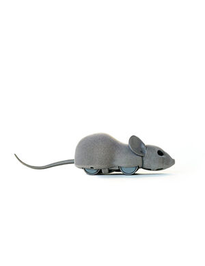 Mouse Remote toys