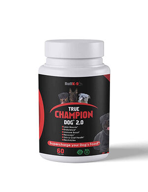 True Champion Dog 2.0 Supplement - Dogs Vitamins & Supplements product