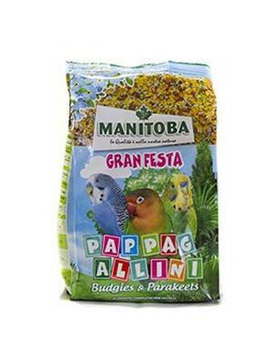 Manitoba Gran Festa Pappag Allini