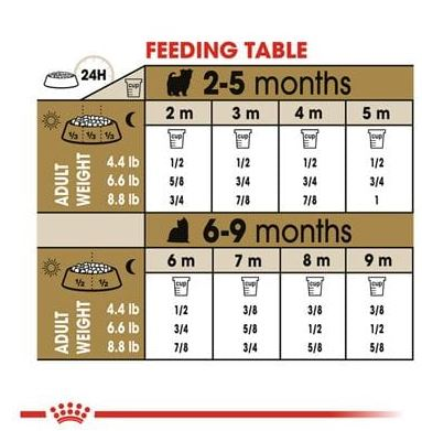 Royal Canin British Shorthair In Gravy 12pc x 85gm -  Cats product
