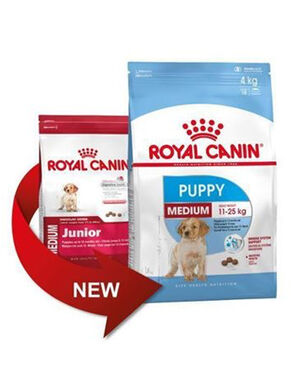 10kg Royal Canin Medium Puppy
