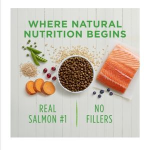 Instinct  Be Natural Real Salmon & Brown Rice Recipe 4.5lb (2kg) -  Dogs product