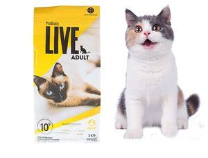 Probiotic Live Cat Adult Duck 2kg -  Cats product