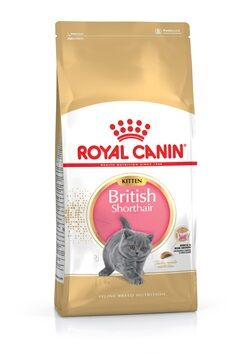 2kg Royal Canin British Shorthair Kitten