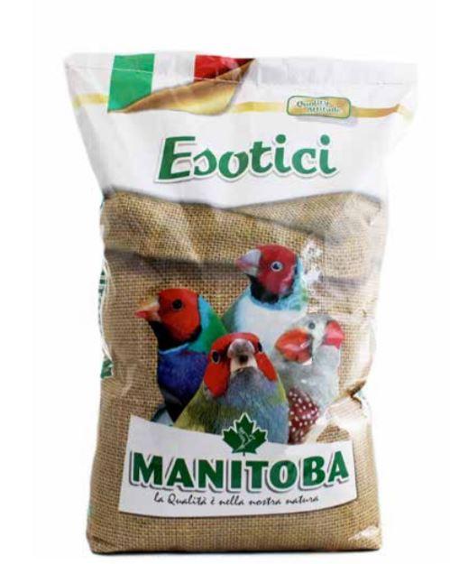 Manitoba Goldfinches Extra 15kg