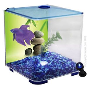 Betta Clear Style Tank With LED Light Blue