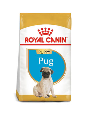 1.5kg Royal canin pug puppy -  Dogs product