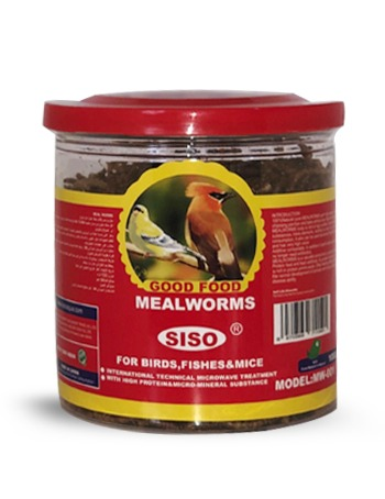 Siso Meal Worms 100g