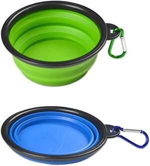 Silicone Pet bowl Green
