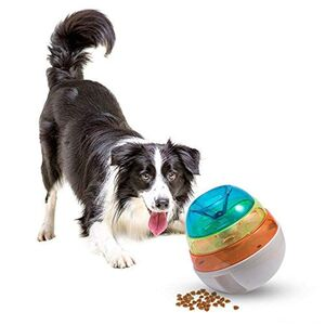 Eating sport play with your food -  Dogs product
