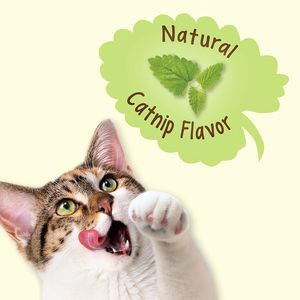Purina Friskies Party Mix Natural Catnip Flavor 10pc x 60g -  Cats product