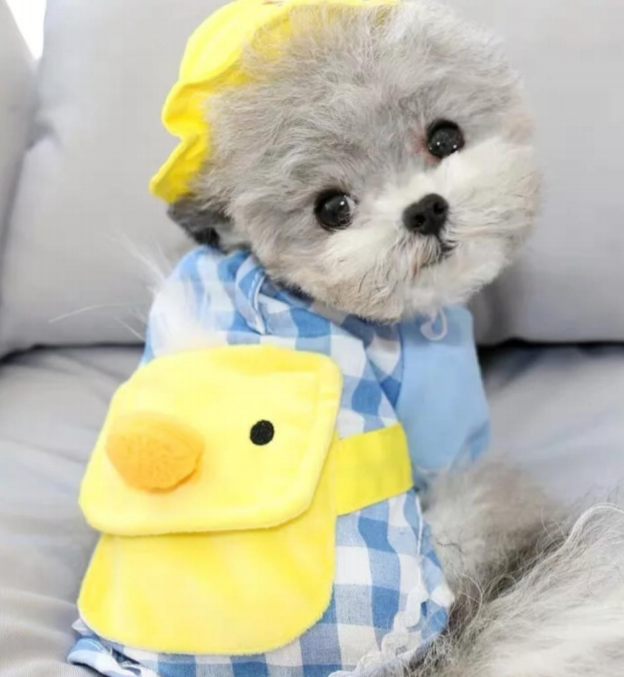 Pet Duck Backpack Shirt Small
