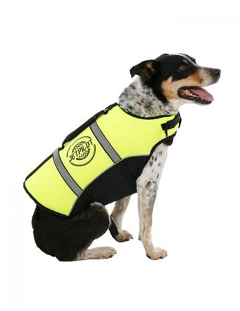 Jetpilot Dog PFD Yellow Large 40-48cm 18-31.5Kg76cm -  Dogs product