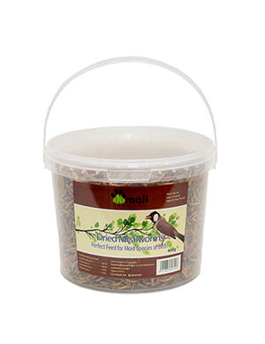 Dried Meal Worms 400g