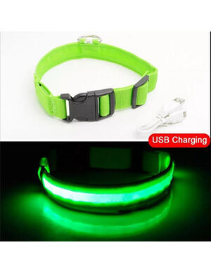 USB Charging Collar Green XL