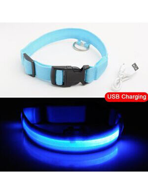 USB Charging Collar Blue XL
