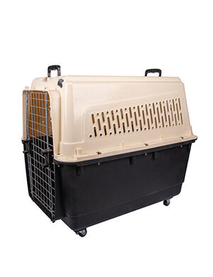 Pet Carrier Box Black & White