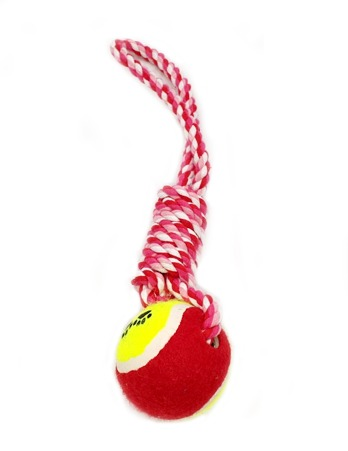 Red Rope Tennis Ball Dog Toy