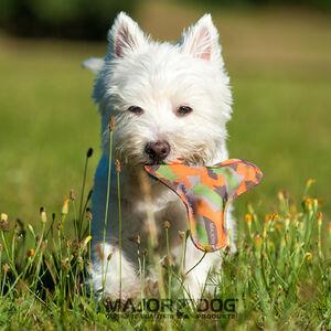 Majordog Boomer -  Dogs product