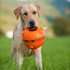 Majordog Ball - Small -  Dogs product