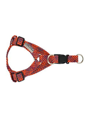 Tall Tails Braided Harness Multicolor Medium