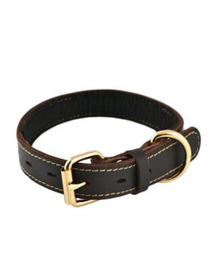 Tall Tails Leather collar Small