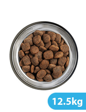Belcando Adult Active 12.5kg -  Dogs product