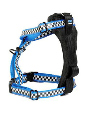 Kiwi Walker Racing Blue Dog Harness Large