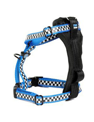 Kiwi Walker Racing Blue Dog Harness Medium