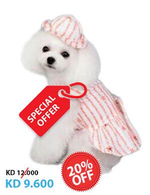 20% Pink & White Hat Dress Medium  -  Dogs product