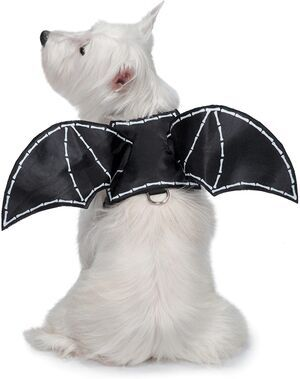 PetEdge ZZ Bat Glow Wing Harness Costume X-Large -  Dogs product