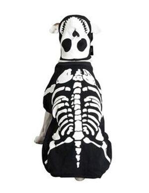 PetEdge CC Glow Bones Costume X-Small