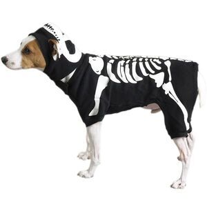 PetEdge CC Glow Bones Costume Small -  Dogs product