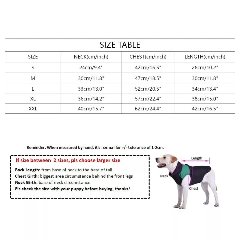 Black Burberry Bear Shirts Medium -  Dogs product