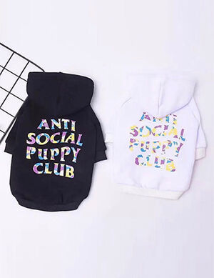 Antisocial Pullover White X-Large