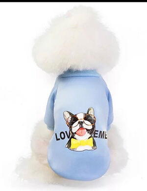 Funny Pets Logo T-Shirt Blue Small -  Dogs product