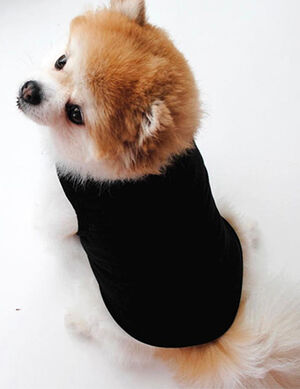 Pet T-Shirt Black Medium