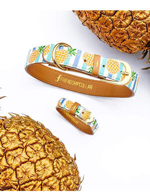 Pineapple Print Dog Collar And Bracelet X-Small -  Dogs product