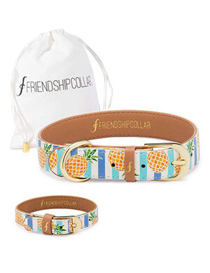 Pineapple Print Dog Collar XL
