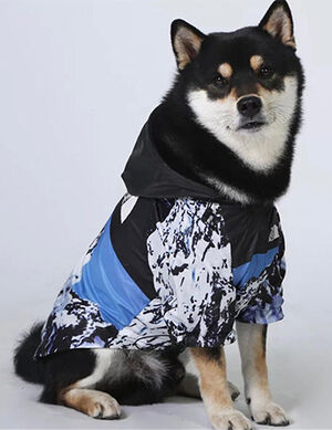 Reflective Coat Blue/Black XXX-Large