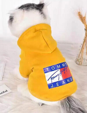 Yellow Tommy Jeans Hoodies Medium