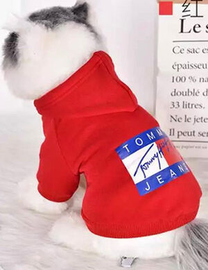 Red Tommy Jeans Hoodies X- Large