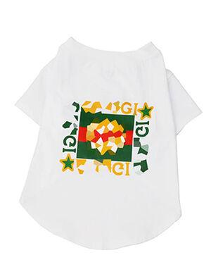 Gucci T-Shirt White Small