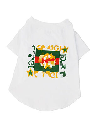 Gucci T-Shirt White Medium